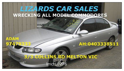 LIZARDS CAR SALES image